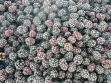 smrznuti-plodovi-sumske-kupine